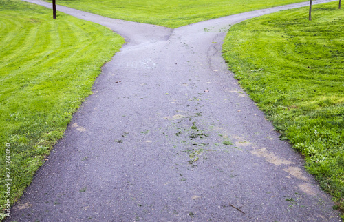 Fényképezés  bifurcation in a park path