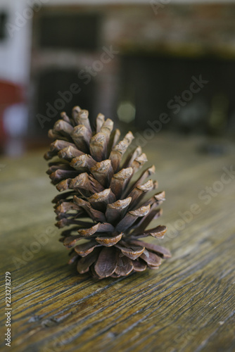 Fotografie, Obraz  Tall pine cone on a wood table in a home
