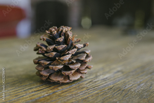 Fotografie, Obraz  Short and stout pine cone on a farm table