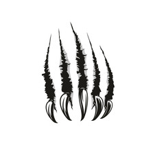 Wild Animal Claw Vector Scratc...