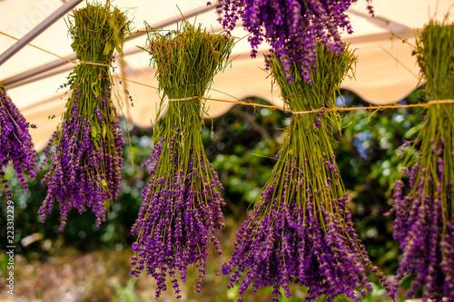 Tuinposter Lavendel Bouquets de lavande séché.