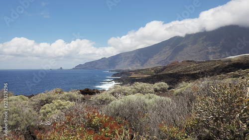 Staande foto Canarische Eilanden Coastal views towards the northern part of the island, with focus on the endemic flora, on the walking route to Charco Azul, El Hierro, Canary Islands, Spain