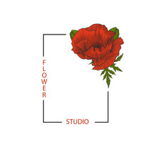 Rectangular Frame With Text Flower Studio And Red Poppy For Your