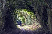 By Way In Hertfordshire