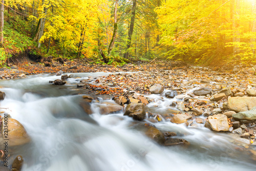 Deurstickers Rivier River in autumn forest with colorful trees and streaming water