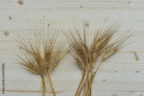 Keuken foto achterwand Paardebloemen en water Spig grain on wooden table