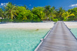 Beautiful beach with wooden jetty and palm trees in Maldives