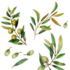 Panel Szklany Przyprawy Watercolor illustration of olive branches.
