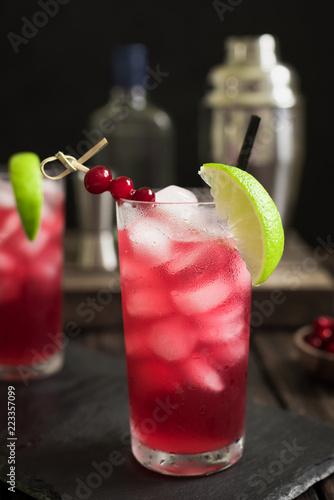 Foto op Canvas Cocktail Cranberry Cape Codder Cocktail