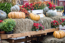 Some Pumpkins With Hay And Flowers On Old Cart For Fall Decoration At Market Place