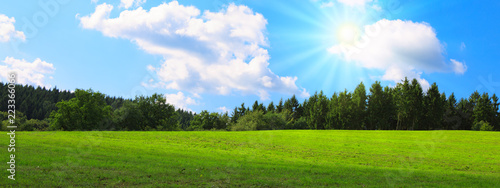 Foto op Plexiglas Weide, Moeras Summer field with green grass and sun. Nature background.