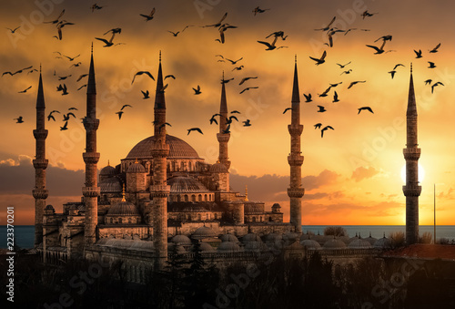 The Blue Mosque in Istanbul during sunset with seagulls flying around Wallpaper Mural