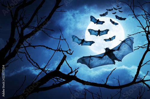 Fotografía These creepy bats fly in on Halloween Night with a full moon behind them