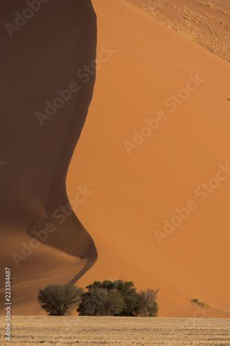 Fotografie, Obraz  Sand dunes of Sossusvlei, Namibia