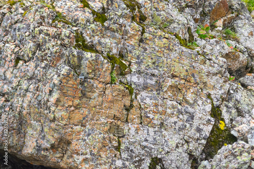 Background texture of a gray brown stone on the rock of the mountain discovered during archaeological excavations as a monument to millions of years of the formation of cancerous deposits under water