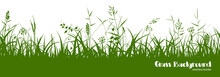 Silhouettes Of Green Grass, Spikes And Herbs. Seamless Border.