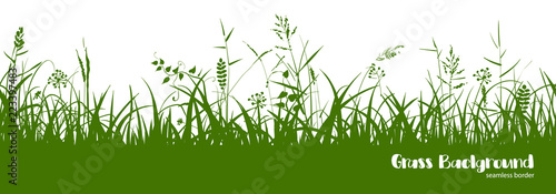 Fototapeta Silhouettes of green grass, spikes and herbs. Seamless border. obraz