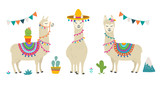 Fototapeta Fototapety na ścianę do pokoju dziecięcego - Cute cartoon llama alpaca vector graphic design set. Hand drawn llama character illustration and cactus elements for nursery design, poster, greeting, birthday card, baby shower design and party decor