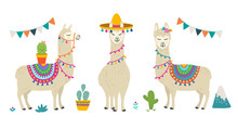 Cute Cartoon Llama Alpaca Vect...