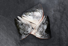 Cut Cleaned Salmon Trout Fish ...