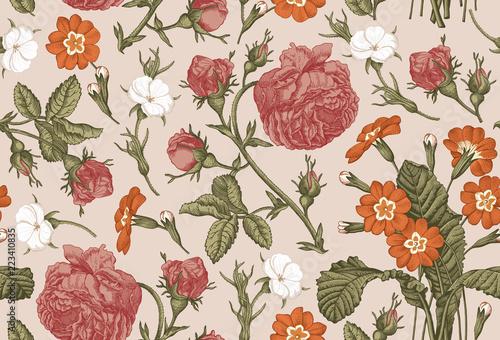 Tapety Barokowe  wzor-piekne-rozowe-kwitnace-realistyczne-kwiaty-na-bialym-tle-tlo-kwiaty-pierwiosnka-rozanego-pierwiosnka-tapeta-barokowy-bukiet-rysunek-grawerowanie-ilustracja-wektorowa-wiktorianski