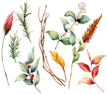 Watercolor Set With Leaves And Berries. Hand Painted Fir Branch, Snowberry, Yellow Leaves Isolated On White Background. Illustration For Design, Print Or Background.