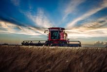 Kansas Harvest
