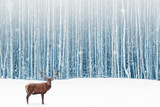 Fototapeta Zwierzęta -  Deer male with big horns in the winter snowy forest. Winter natural background. Christmas artistic image.