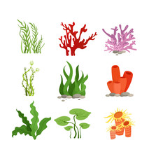 Vector Illustration Set Of Col...