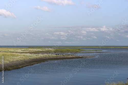 nordsee, Insel, wattenmeer, himmel, landschaft, meer, beach, wasser, natur, blau, küste, cloud, gras, sand, ozean, sommer, fluss, see, cloud, horizont, anblick, green, schön, day, panorama