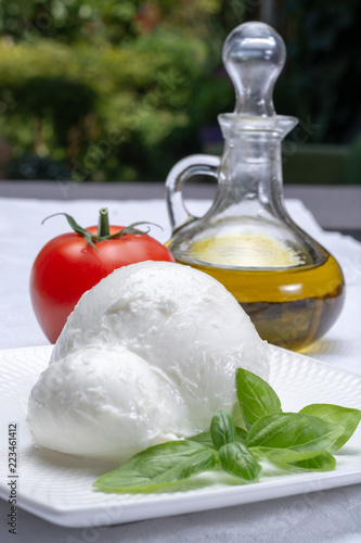 Poster Dairy products Fresh soft Italian white cheese mozzarella buffalo, original from Campania, Paestrum and Foggia regions, South Italy, served with tomatoes, fresh basil and olive oil