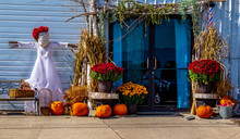 A Fall Harvest Display- Complete With Pumpkins, Scarecrow, Autumn Flowers And Straw.