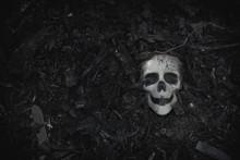 Human Skull On Ground For Halloween Design