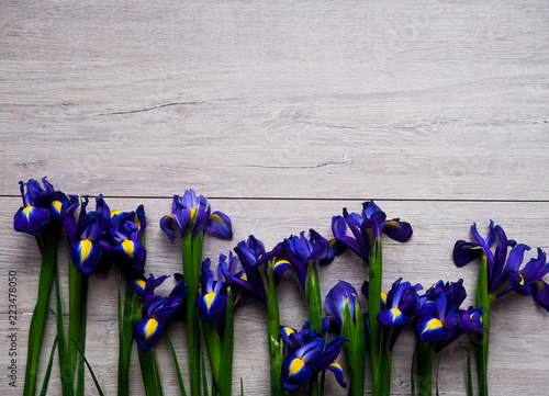 Spoed Foto op Canvas Iris Beautiful iris flowers on wooden background, holiday, greeting card, space for text
