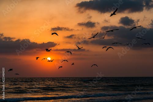 Sunset summer sun on the sea coast