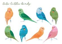 可愛い小鳥のセット