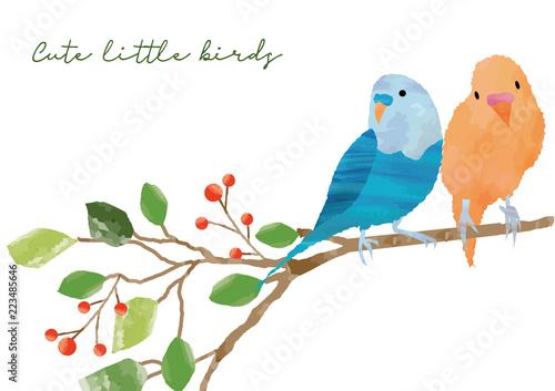 小鳥のフレーム