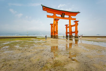Torii Gate On Low Tide With Re...