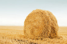 Field After Harvest, Big Round...