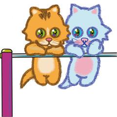 遊び好きな2匹の仔猫の、チンチラ・キャッツ篇01。