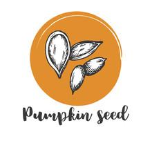 Pumpkin Seed Vintage Hand Draw...