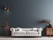 Leinwandbild Motiv empty wall in classical style interior with white sofa on grey background wall.