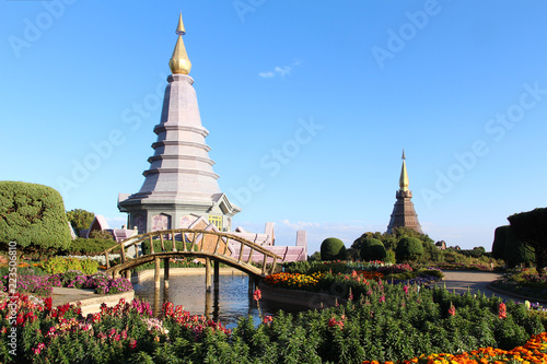Fotografia  Tropical Botanical Garden in Thailand.