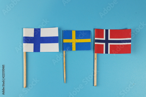 In de dag Noord Europa A states of North Europe. Scandinavia states and their flags Norway, Findland and Sweden