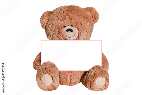 Teddy bear toy isolated on white background   #223512234