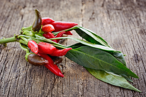 Staande foto Hot chili peppers A bunch of small red, juicy hot chili peppers of tabasco variety with leaves on an old wooden board