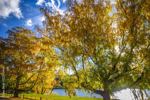 Tuinposter Oceanië Lake Wakatipu, New Zealand