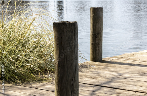 wooden jetty posts