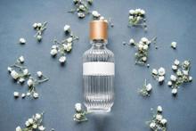 Transparent Bottle Of Perfume ...