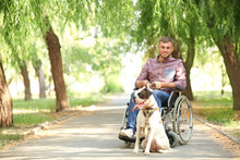 Young Man In Wheelchair And His Service Dog Outdoors